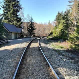 Valley Trail – Tracks and Carver